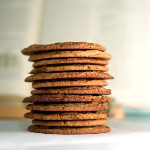 Make Homemade Cookies for Holiday Gifts at Toast Home Cooking in Fort Greene Brooklyn