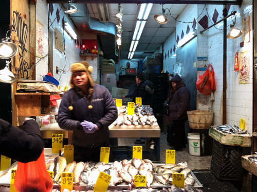 shopping for fish in new york city's chinatown
