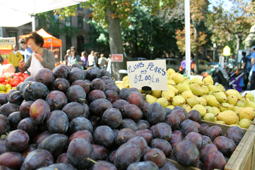 plums at fort greene farmer's market