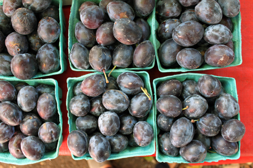 pints of plums at the farmers market in brooklyn