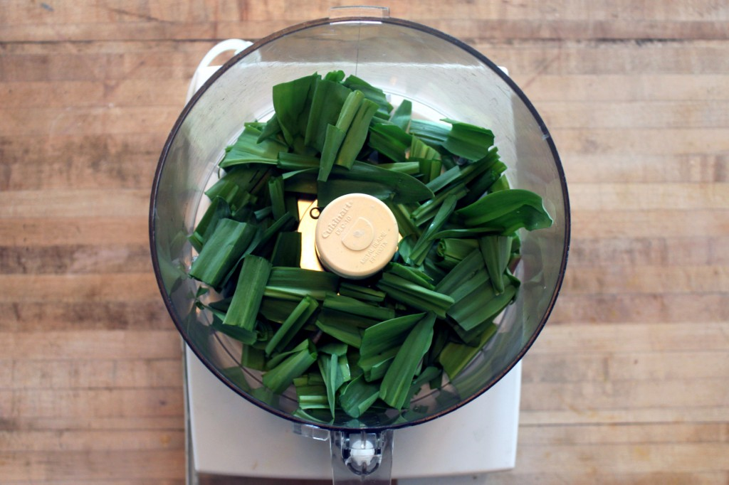 ramp pesto in food processor