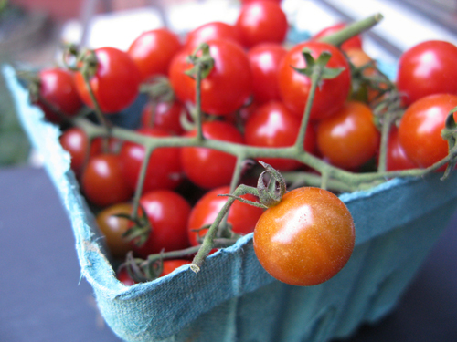 cherry tomatoes from fort greene farmer's market