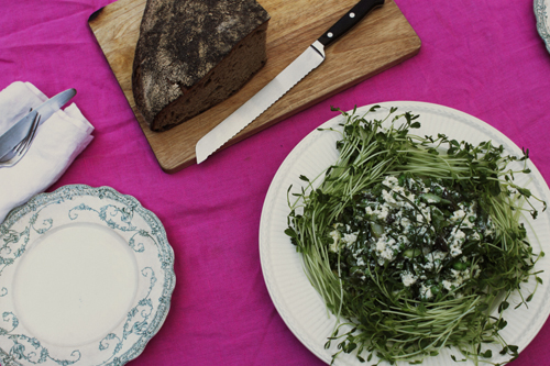 spring lunch recipe peas asparagus mint ricotta